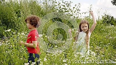 Due giovani in collera camminano con un prato di fioritura stock footage