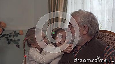 Due ragazze sveglie che giocano sotto la presidenza del loro nonno che si siede Le nipoti tirano la barba del genere che sembra l stock footage