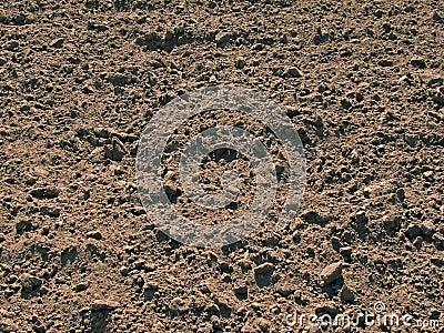 The dug up soil