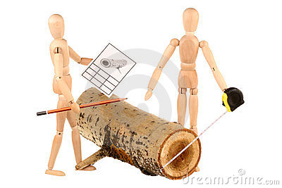 Dummies and log