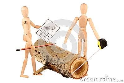 Dummies and log