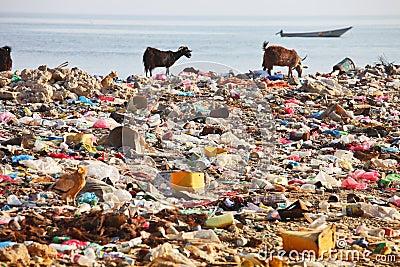 Dump on the beach