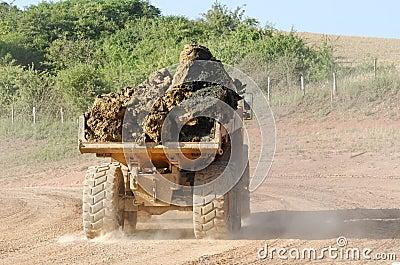 Dumper truck