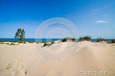 Dune beach