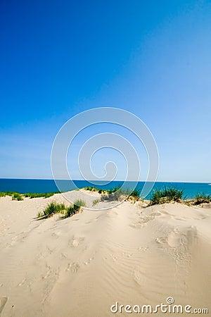 Dune beach vertical