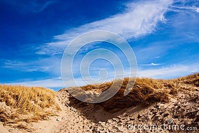 Dune of Denmark