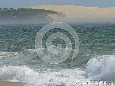Dune du Pyla, La Teste de Buch (France)