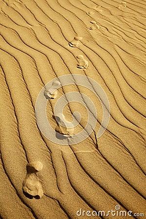 Dune Footprints