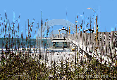 Dune grass and fishing pier.
