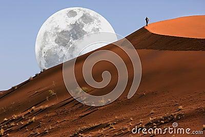 Dune walking in the Namib Desert