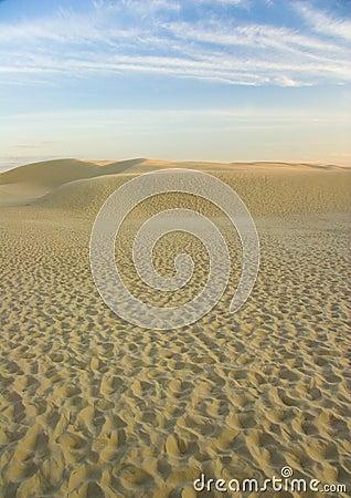 Free Dunes Stock Image - 2110941