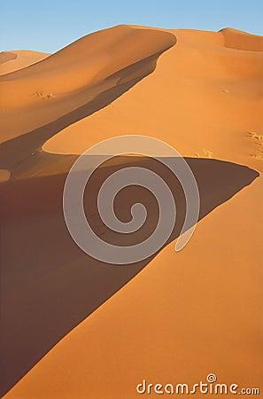 Dunes 34f