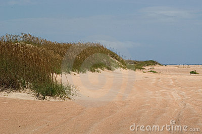 Dunes and Beach Meet