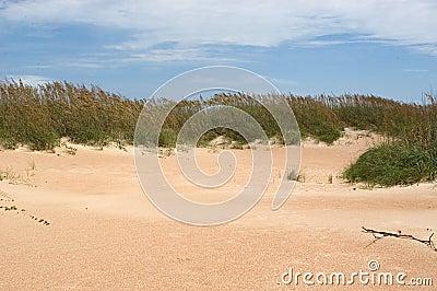 Dunes of Cape Lookout