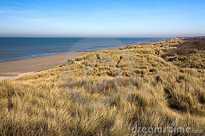 Dunes At The Coast