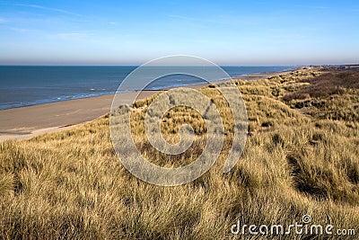 Dunes At The Coast