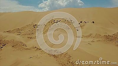 Dunes de sable dans le désert de Gobi Pousse régionale de bourdon banque de vidéos