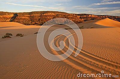 Dunes de sable roses de corail 1