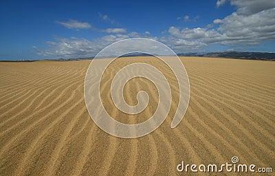 Dunes in Maspalomas