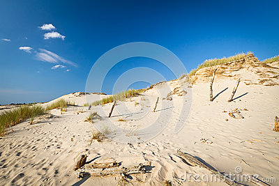 Dunes mobiles dans Leba, Pologne