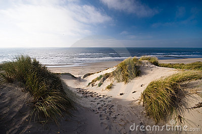 Dunes and ocean