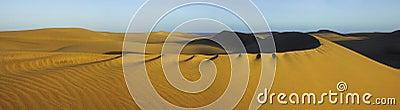 Dunes pan 1