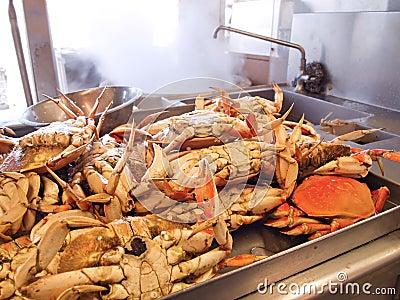 Dungeness Crabs In Kitchen