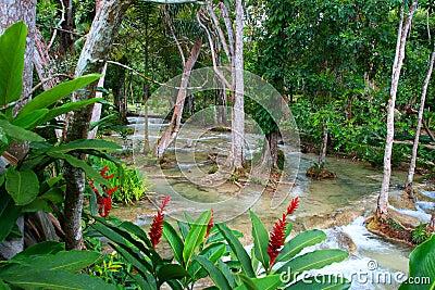 Dunn s River Falls, Ocho Rios, Jamaica