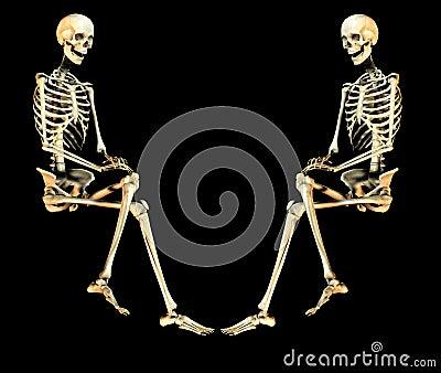 Duo 2 van de schedel