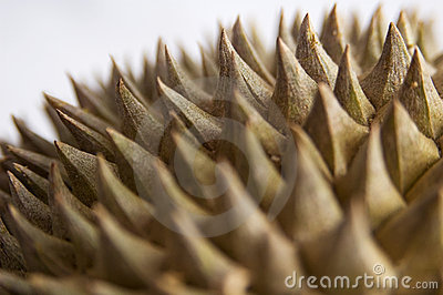 Durian 4