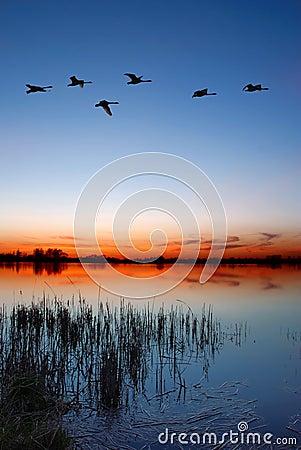 Free Dusk By The Lake Stock Photo - 2265950