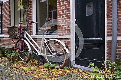 Dutch bike with basket