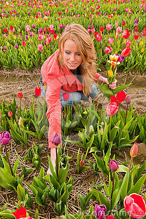 Free Dutch Blond Girl Picking Flowers In Tulips Field Stock Photo - 24565980