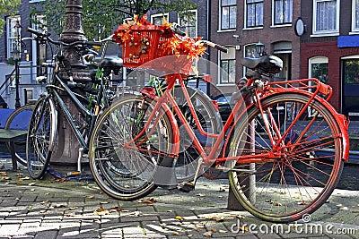 Dutch orange bike