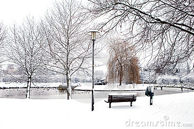 Dutch park in wintertime
