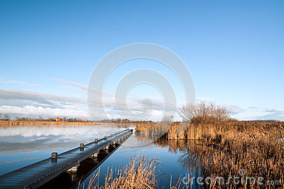 Dutch river with jetty and reed at the side