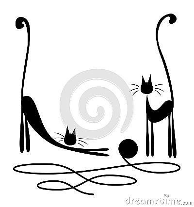 Dwa czarnego kota