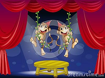 Dwa małpy wykonuje przy sceną