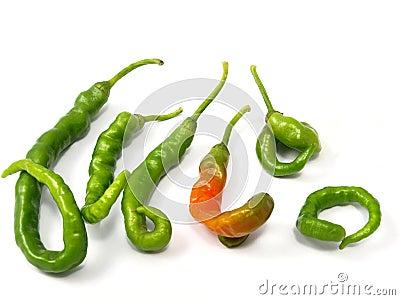 Dysmorphism pepper