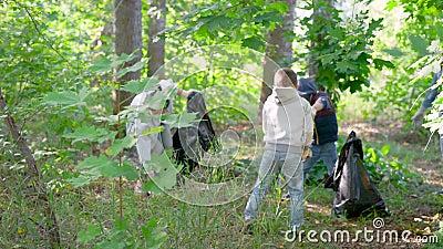 Dzieci i dorośli zbierają śmieci na temat natury w lesie w słoneczny letni dzień, dbając o środowisko zbiory wideo