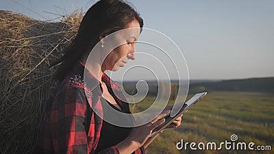 Dziewczyna rolnik używa tabletu na polu obok stogu siana przy zachodzie słońca Inteligentne rolnictwo, wykorzystanie nowoczesnych zbiory