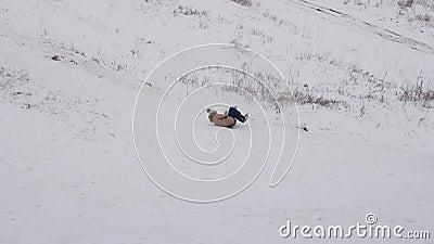 Dziewczyna spacerowała po wzgórzu w saniach w śniegu Dziewczyna gra zimą w parku Gry zimowe Zimne warunki klimatyczne Śnieżny zbiory