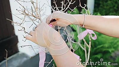 Dziewczyna wiąże różowego faborek suchy dekoracyjny drzewo Rodzaju przyjęcie eventide zbiory wideo