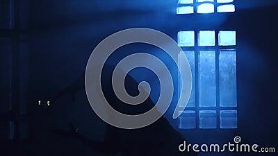 Dziewczyny sylwetki dancingowy rówieśnik w backlight blask księżyca od okno zdjęcie wideo