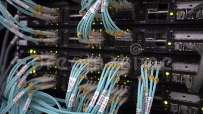 数据中心上的光纤电缆 电信宽带 闪烁绿色指示灯 技术服务器 影视素材