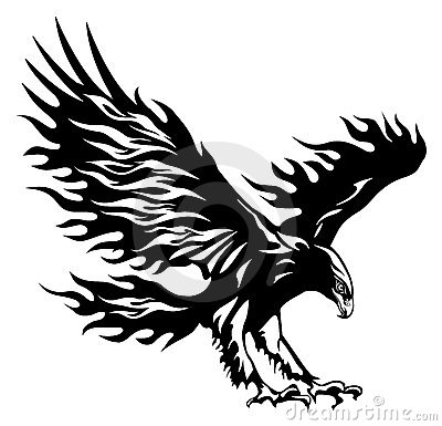 Free Eagle Stock Images - 13196534
