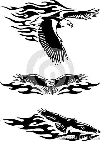 Free Eagle Stock Photography - 5022352