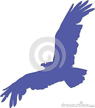 Free Eagle Stock Image - 5842821