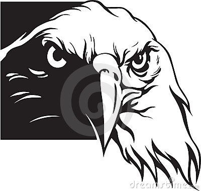 Free Eagle Royalty Free Stock Images - 7027549