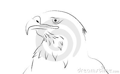 Eagle as line drawing